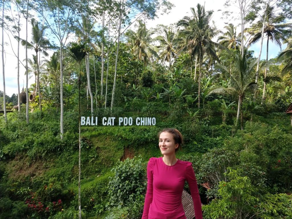 Kaffeeplantage Bali Cat Poo Chino
